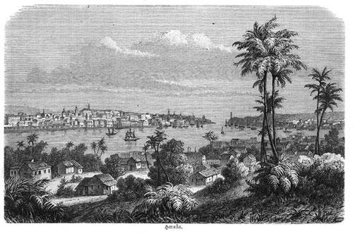 Havanna: A.v.H besucht Kuba auf seiner Amerikareise zweimal: im Winter 1802/03 und im März/April 1804.