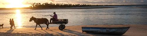 Boipeba - Blog des DLF über den Alltag in Brasilien