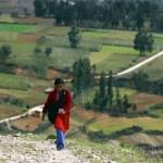 Doku über 'Bibliotecas Rurales' in Peru: «Die Wolkenbibliothek»
