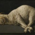 Nach 400 Jahren in Deutschland zu sehen: Barockmaler Francisco de Zurbarán