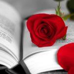 Welttag des Buches, der Rosen und des Drachenbluts: Sant Jordi